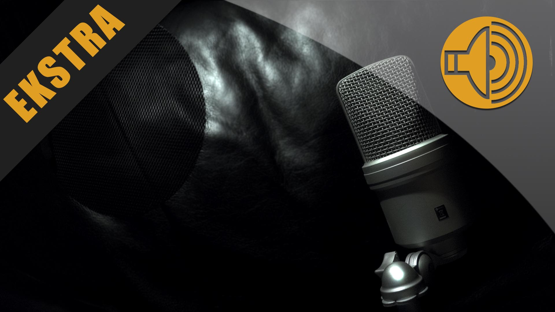 Svart snø: Radioprogrammene